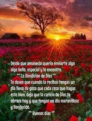feliz amanecer especial