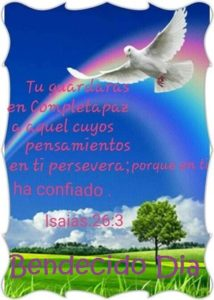 Buenos Dias con Palabra de Dios confianza