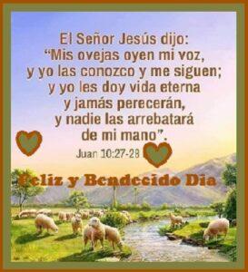 dia de bendiciones vida