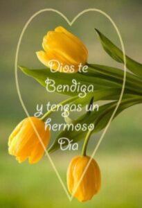 bendecido día Dios
